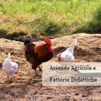 http://www.santarcangelodiromagna.info/wp-content/uploads/2016/03/Aziende-agricole-e-Fattorie-didattiche2-200x200.jpg
