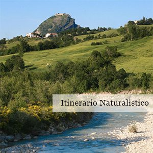 http://www.santarcangelodiromagna.info/wp-content/uploads/2016/03/Itinerario-Naturalistico-300x300.jpg