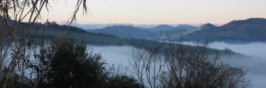 http://www.santarcangelodiromagna.info/wp-content/uploads/2016/03/Natura1-IMG_2049-900x300.jpg